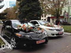Авто на весілля Полтава
