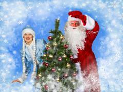 Дід Мороз і Снігуронька на будинок