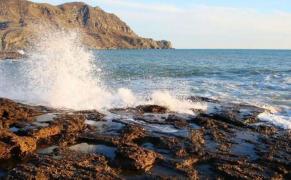 Ділянка, Море, Крим, Житло і Бізнес