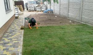 Догляд за садом, озеленення, послуги садівника, посадка і обрізка д