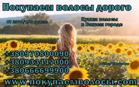 Куплю волосся дорого Львів Миколаїв Київ Маріуполь вся Україна