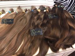 Куплю волосся дорого. Продати волосся в Україні