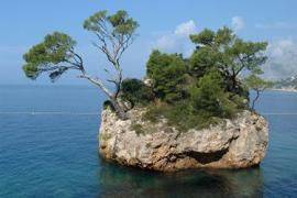 Незабутня Хорватія 2017. Відпочинок на віллі Scit