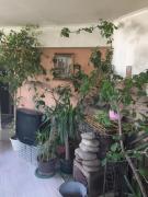 Продам затишний одноповерховий будинок на Слобідці з ділянкою 12 соток