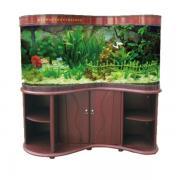 Продаж акваріумів