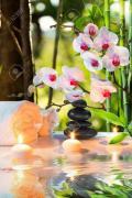 Сеанси всіх видів розслабляючого масажу