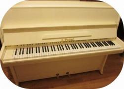 широкий вибір роялів і піаніно