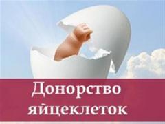 Співпрацюємо з охочими стати сурогатними матерями та донорами яй