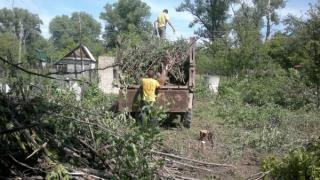 Спил дерев, корчування пнів та планування території